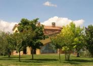 La Casa Fra Gli Olivi