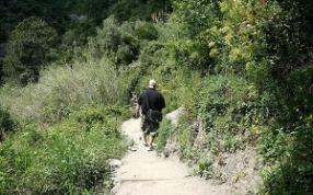 Il Piacere Di Camminare 2012 - Passeggiate Naturalistiche Accompagnate