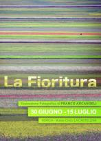 Exhibition 'la Fioritura' By Franco Arcangeli, 2012