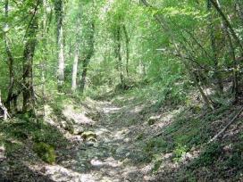 Il Piacere Di Camminare 2013, Trekking Interregionale