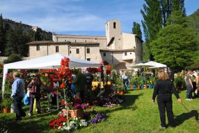 Primavera In Valnerina 2013, Mostra-mercato Del Giardinaggio E Del Florovivaismo