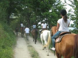 Agriturismo e Cavallo
