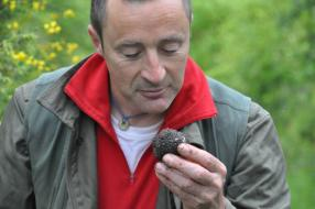Truffle Hunting, Relax and Charm