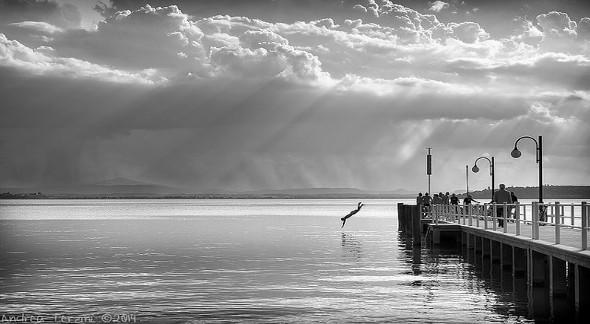 Lago Trasimeno tuffo