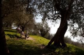 Francesco's Way By Bike - La Verna To Assisi
