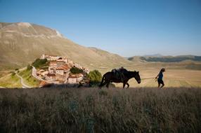 Horse Tour - Esperienza a Cavallo