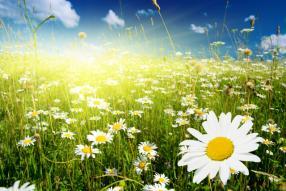 Spring's Last Minute at Relais La Ciriola