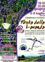 Festa Della Lavanda Di Assisi 2016