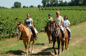 Horse Riding Center San Biagio