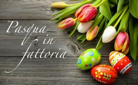 Pasqua in Fattoria